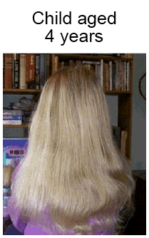 hair-growth-process5.jpg